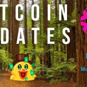 Altcoin Updates: DeFiChain, Morpheus Labs, DuckDAODime, PAID and PLASM