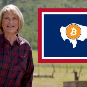 Wyoming Elects first Bitcoin-Owner to the US Senate