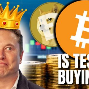 #Bitcoin Trends in Twitter Bios | Elon Musk Is a KING-MAKER! 👑