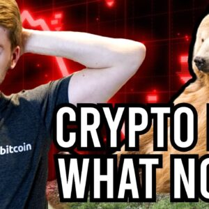 Crypto Market Turns Red:  WHAT NOW? *POSSIBLE SCENARIOS*