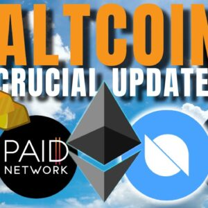 Bitcoin 60k IMMINENT!!! PAID Network, Elrond, Polygon, Ontology, FUSE, Exeedme Updates