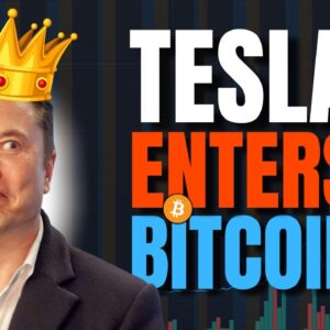 Tesla Buys $1.5 billion in Bitcon as Elon Musk Sends BTC to new ATH!!!!!!! 🚀🚀🚀