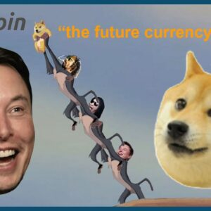 ELON MUSK LOVEEEEES DOGECOIN (AND BITCOIN).... IVAN ON TECH EXPLAINS