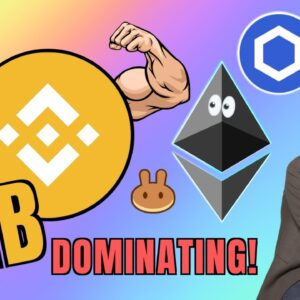 Binance Coin Flexing HARD Against Ethereum + THETA, Chainlink, FUSE and Western Debt Rant!