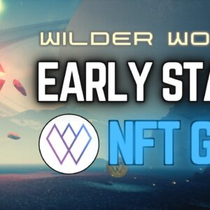 Fractional NFT Ownership With Wilder Worlds NFT Marketplace