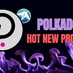 Next Hot Polkadot Project? MANTA Network!