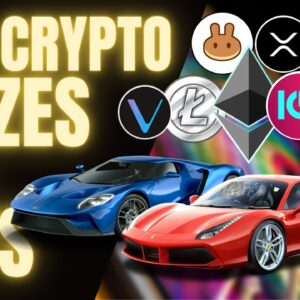Earn CRYPTO, NFTs and PASSIVE INCOME With Trade Racer