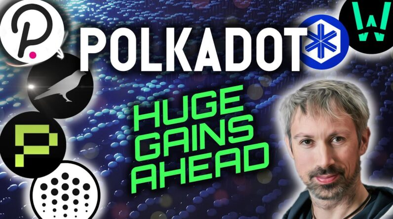POLKADOT COULD MAKE YOU HUGE GAINS!!! CROWDLOANS EXPLAINED