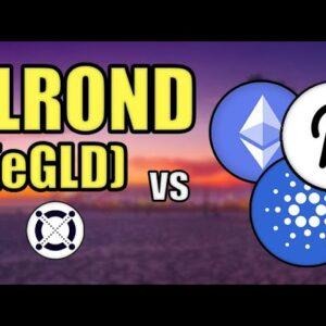 Elrond (eGLD) vs Cardano, Ethereum, & Polkadot! (BIG ELROND PRICE PREDICTION) Hashoshi Interview