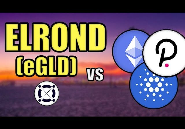 Elrond (eGLD) vs Cardano, Ethereum, & Polkadot! (BIG ELROND PRICE PREDICTION) Hashoshi Interview