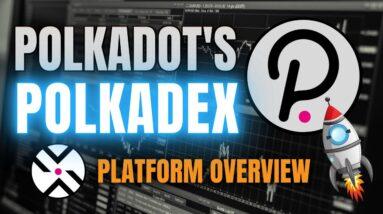 Polkadot's Polkadex: Everything You NEED to Know